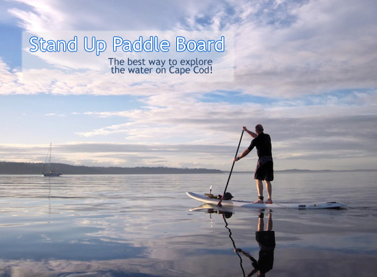 Stand Up Paddle Board (SUP) rental Cape Cod